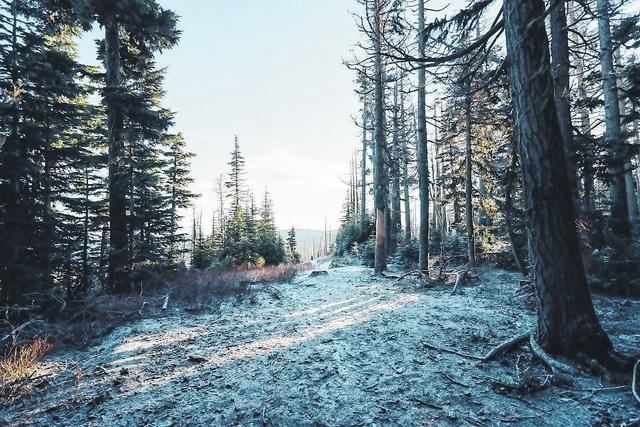 Outdoors Listings: Nov. 30 to Dec. 6, 2016