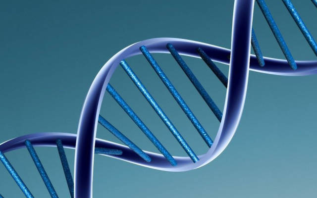 News of the Weird: Part-time chip tasters and DNA data storage