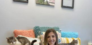 Vikki Kenyon, owner of Purrfect Mugs Cat Cafe, sits in the cafe's Cat Den with cats from local rescue Whiskers World. Guests can book time in the den to play with the cats, who are all available for adoption, while they enjoy their cafe treats.                                  Submitted photo